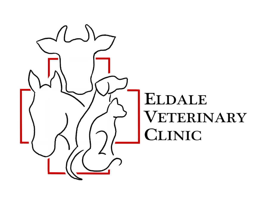 Eldale Veterinary Clinic